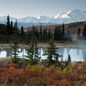 Pine Lake-0